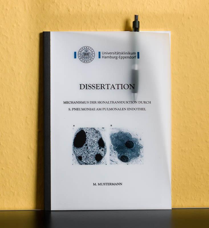 Dissertation druck